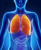 healthy_lung_1