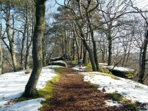 Path during winters