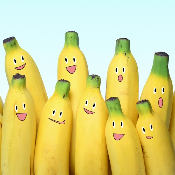 Oso Simple Squishy Banana : The Benefits of Including Bananas in Your Diet - HealthStatus