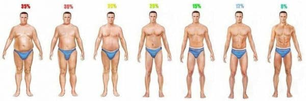 body fat percentage chart ment