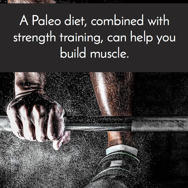 paleo builds muscle
