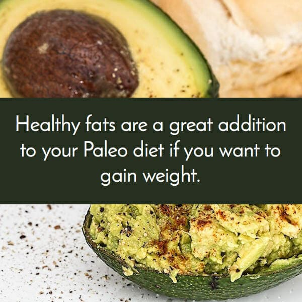 paleo includes healthy fats