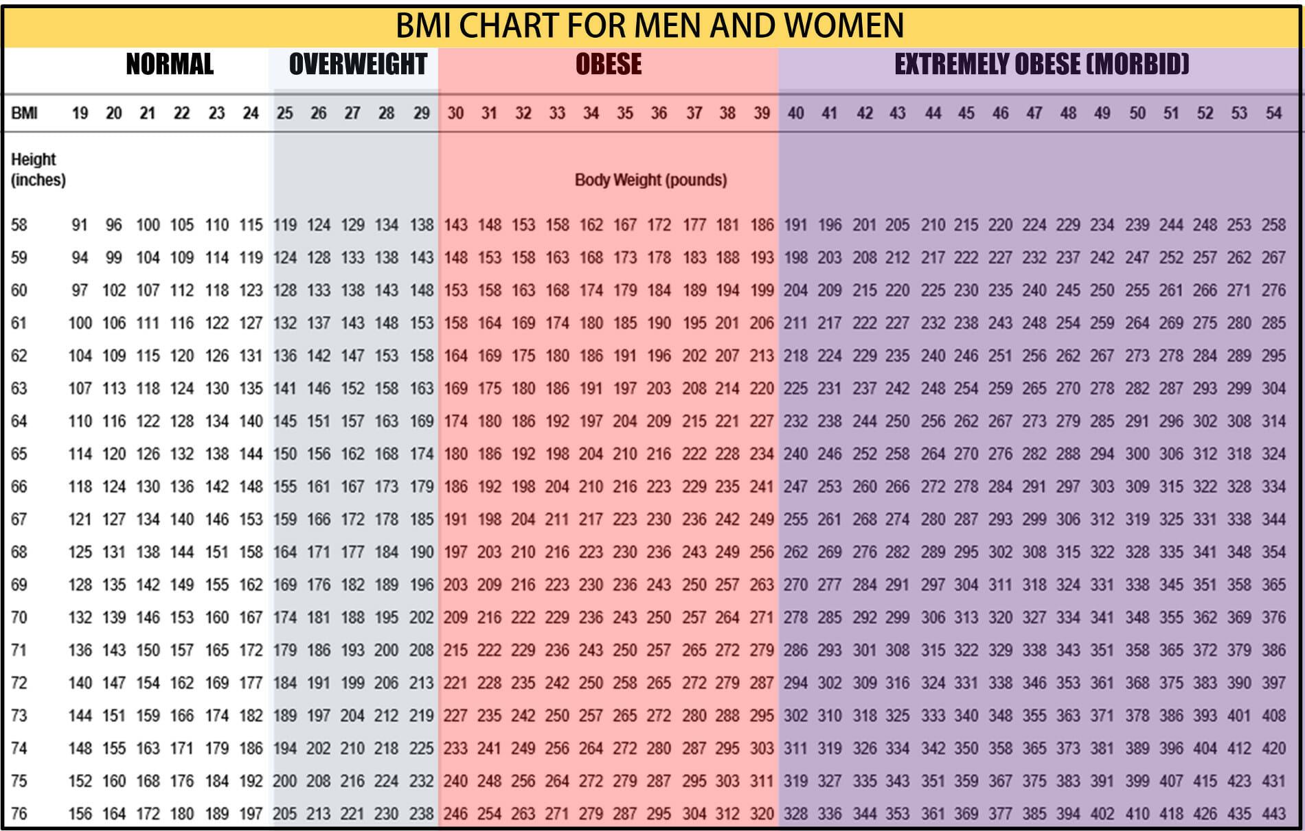 Adult female weight chart