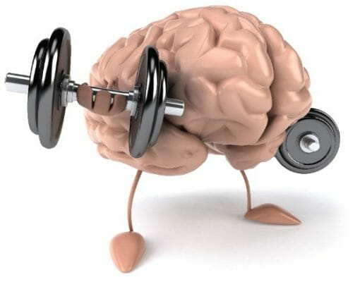 Mental Fitness and the Totally Fit Life
